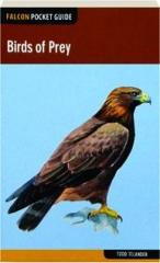 BIRDS OF PREY: Falcon Pocket Guide