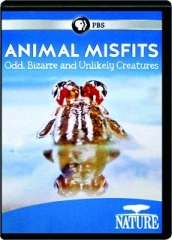 ANIMAL MISFITS: Odd, Bizarre and Unlikely Creatures