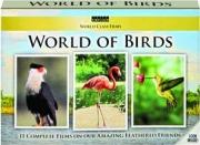 WORLD OF BIRDS: World Class Films