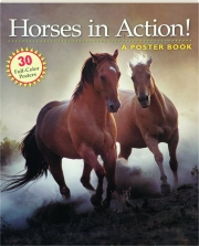 HORSES IN ACTION! A Poster Book