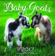2017 BABY GOATS 16-MONTH CALENDAR