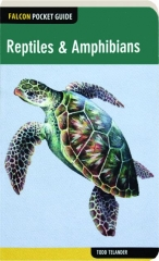 REPTILES & AMPHIBIANS: Falcon Pocket Guide