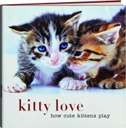 KITTY LOVE: How Cute Kittens Play