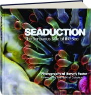 SEADUCTION: The Sensuous Side of the Sea