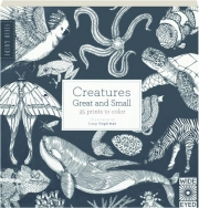 CREATURES GREAT AND SMALL: 35 Prints to Color