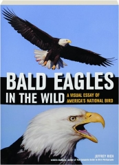 bald eagles essay A canadian adventure to photograph bald eagles in the snow before i was a  photographer my life was snowboarding, endless back to back.