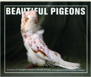 BEAUTIFUL PIGEONS: Portraits of Champion Breeds