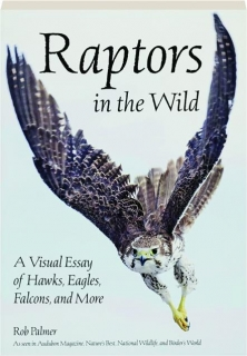 RAPTORS IN THE WILD: A Visual Essay of Hawks, Eagles, Falcons, and More