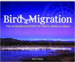 BIRD MIGRATION: The Incredible Journeys of North American Birds