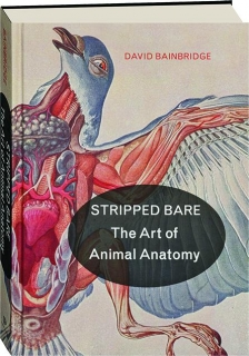 STRIPPED BARE: The Art of Animal Anatomy