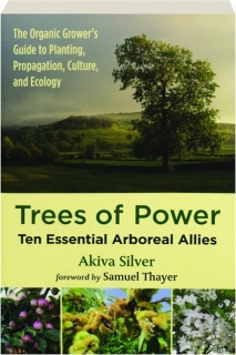 TREES OF POWER: Ten Essential Arboreal Allies