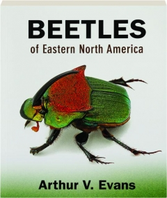 BEETLES OF EASTERN NORTH AMERICA