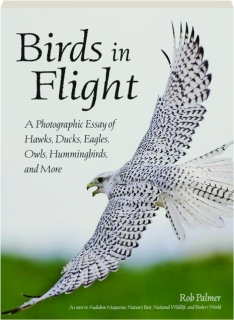 BIRDS IN FLIGHT: A Photographic Essay of Hawks, Ducks, Eagles, Owls, Hummingbirds, and More