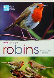 ROBINS: RSPB Spotlight