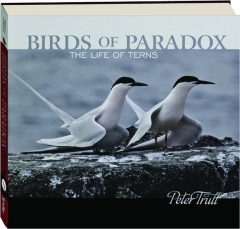 BIRDS OF PARADOX: The Life of Terns