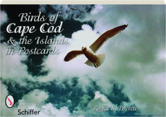BIRDS OF CAPE COD & THE ISLANDS IN POSTCARDS