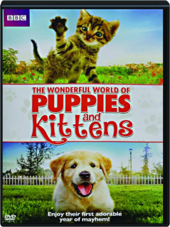 THE WONDERFUL WORLD OF PUPPIES AND KITTENS