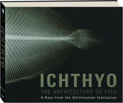 ICHTHYO: The Architecture of Fish