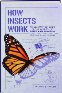 HOW INSECTS WORK: An Illustrated Guide to the Wonders of Form and Function--from Antennae to Wings