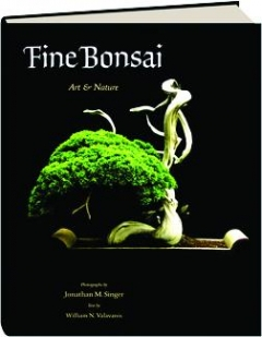 FINE BONSAI: Art & Nature