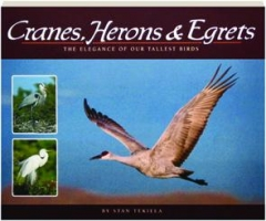 CRANES, HERONS & EGRETS: The Elegance of Our Tallest Birds