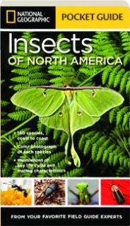<I>NATIONAL GEOGRAPHIC</I> POCKET GUIDE TO THE INSECTS OF NORTH AMERICA