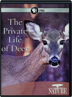 THE PRIVATE LIFE OF DEER: NATURE