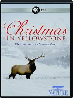 CHRISTMAS IN YELLOWSTONE: NATURE