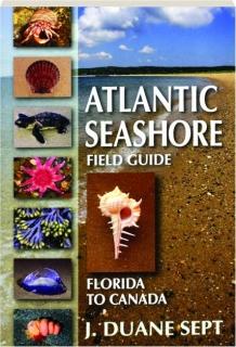 ATLANTIC SEASHORE FIELD GUIDE: Florida to Canada