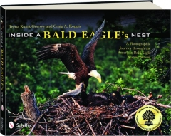 INSIDE A BALD EAGLE'S NEST: A Photographic Journey Through the American Bald Eagle Nesting Season