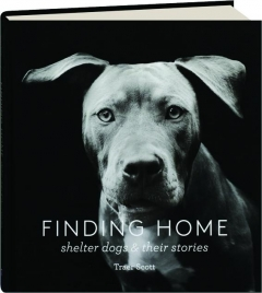 FINDING HOME: Shelter Dogs & Their Stories