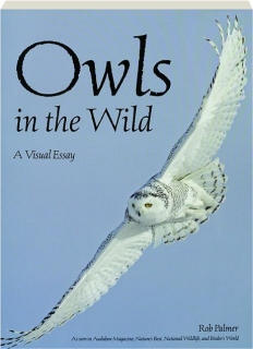 OWLS IN THE WILD: A Visual Essay