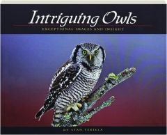 INTRIGUING OWLS: Exceptional Images and Insight