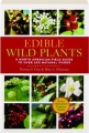 EDIBLE WILD PLANTS: A North American Field Guide to over 200 Natural Foods - Thumb 1