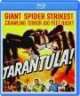 TARANTULA! - Thumb 1