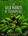 THE WILD PARROTS OF TELEGRAPH HILL - Thumb 1