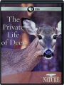THE PRIVATE LIFE OF DEER: NATURE - Thumb 1