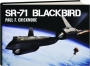 SR-71 BLACKBIRD - Thumb 1