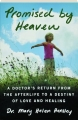 PROMISED BY HEAVEN: A Doctor's Return from the Afterlife to a Destiny of Love and Healing - Thumb 1