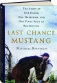 LAST CHANCE MUSTANG: The Story of One Horse, One Horseman, and One Final Shot at Redemption - Thumb 1