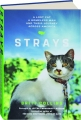 STRAYS: A Lost Cat, a Homeless Man, and Their Journey Across America - Thumb 1