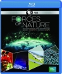 FORCES OF NATURE - Thumb 1