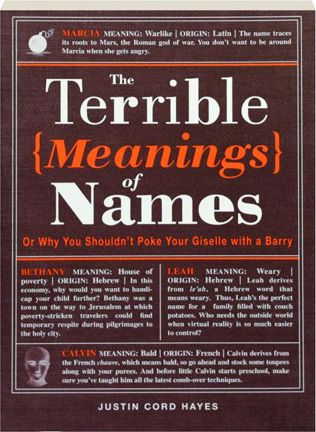 THE TERRIBLE MEANINGS OF NAMES: Or Why You Shouldn't Poke Your Giselle with  a Barry - HamiltonBook com