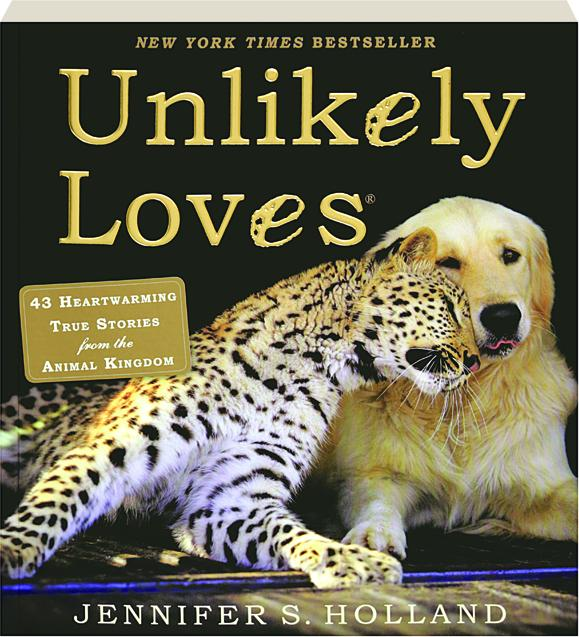 Image of: Friends Unlikely Loves 43 Heartwarming True Stories From The Animal Kingdom Youtube Unlikely Loves 43 Heartwarming True Stories From The Animal